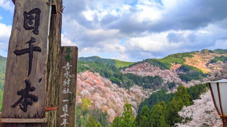2.Apr.2020 吉野の山桜